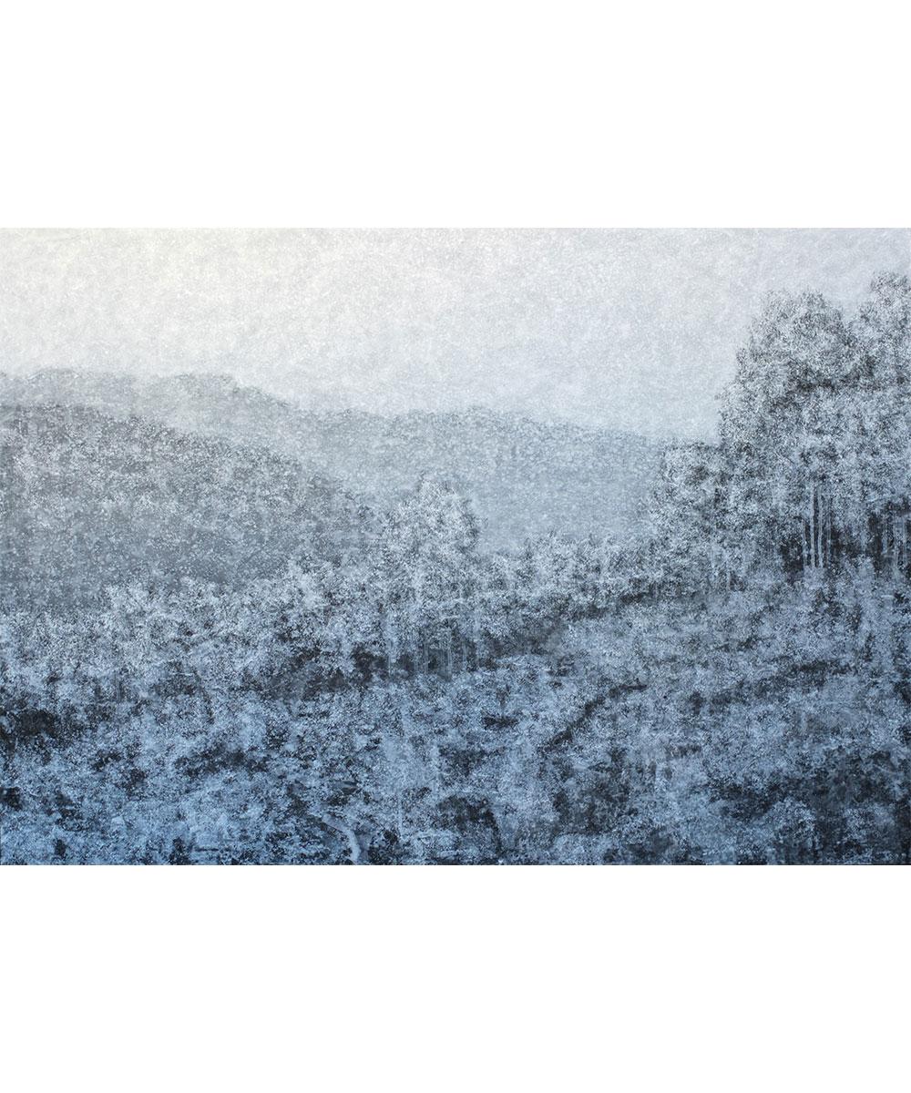 Vivid-Gallery-Mistak-Tomek-Dyspersja-XXXIV